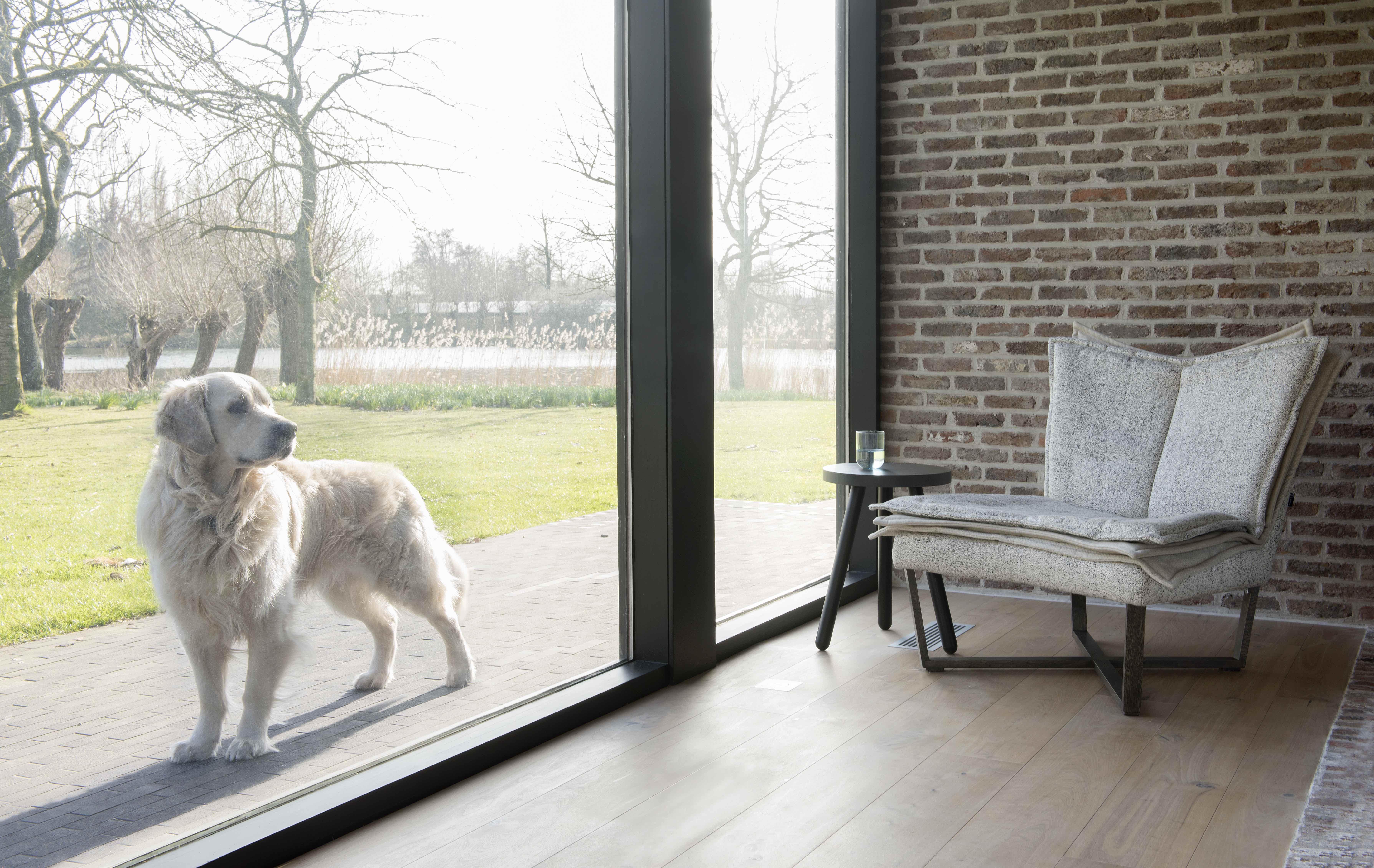 Fauteuil design et confortable - pieds en bois - Flo